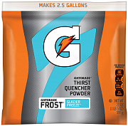 Gatorade Thirst Quencher Powder 595 гр.